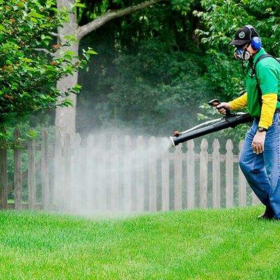 El uso de insecticidas a lo largo de la historia timeline