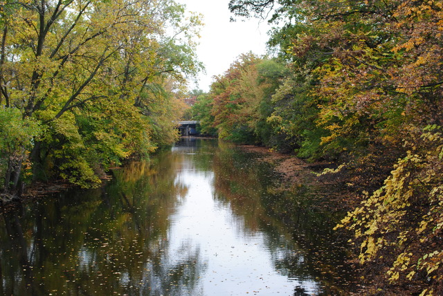 Red Cedar River Picture 3