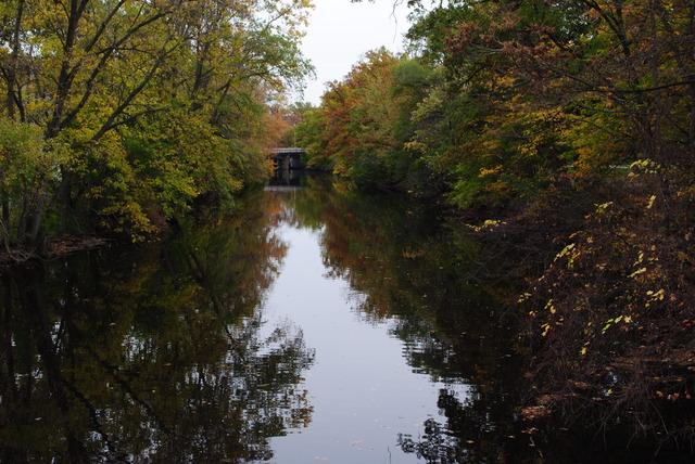 Red Cedar River Picture 4