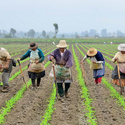 Contexto histórico de las políticas de atención a la ruralidad en Colombia timeline