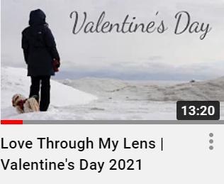 """Love Through My Lens | Valentine's Day 2021"""