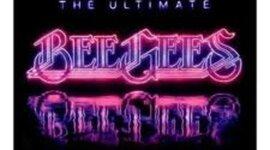 BEEGEEs timeline