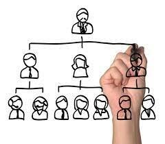 Estructura de una compañía