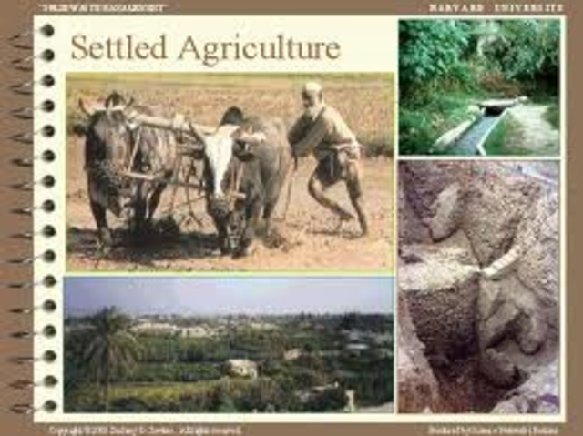 The Beginning of Settled Agriculture,8,000 to 6,500 BC