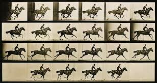 the horse in motion the first movie