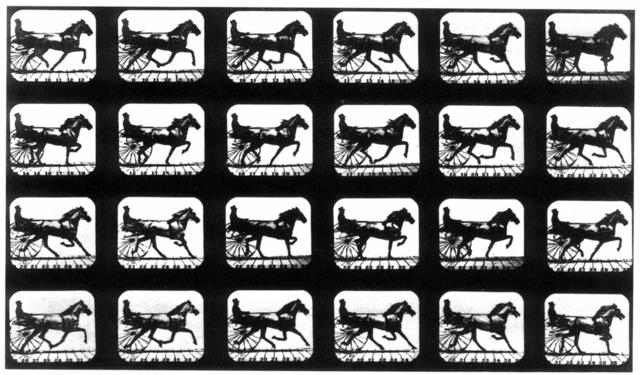Muybridge: The Horse in Motion