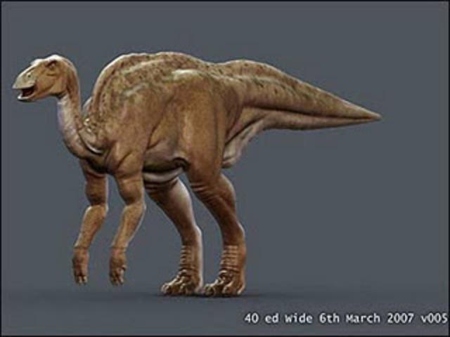 Dinosaur Mummy Found