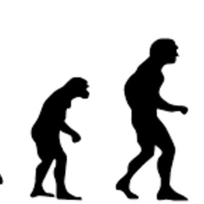 Aportaciones a la Teoría Sintética de la Evolución timeline