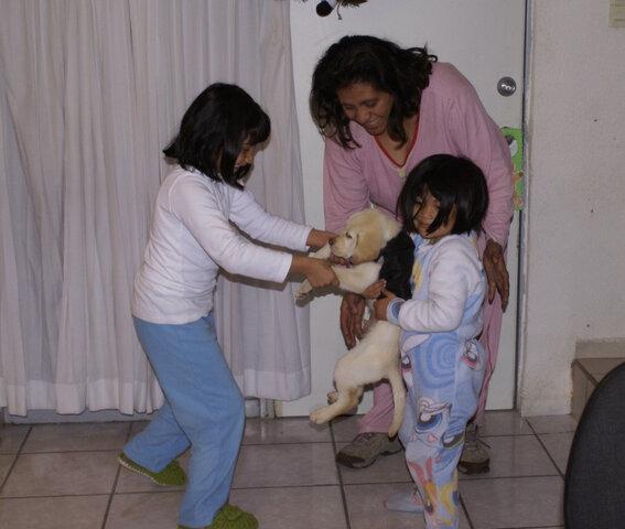 Llegada de Bruno a la familia