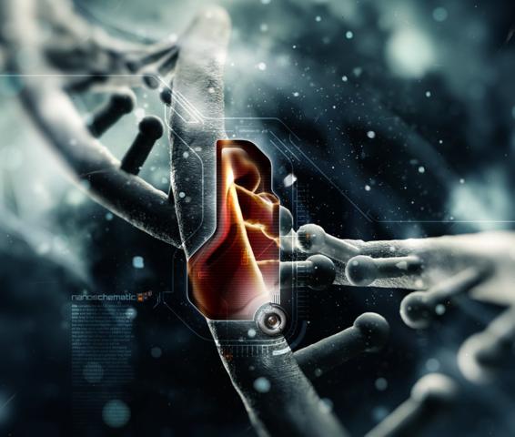 photo de la double hélice de l'ADN
