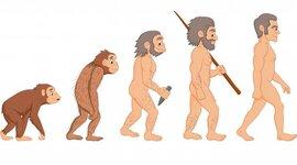 Historia del Internet y Evolución de la Web. timeline