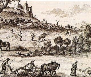 Revolucion agrícola