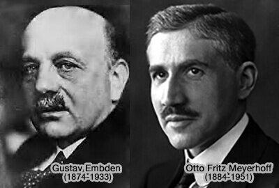 Gustav Embden y Otto Meyerhof