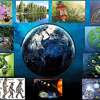 Evolución histórica de las Ciencias Naturales. timeline