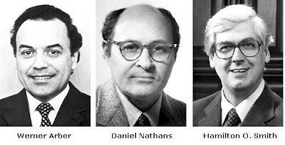 Werner Arber, Daniel Nathans y Hamilton Smith