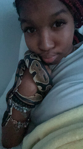 bought my snake