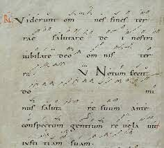 'Neumes'
