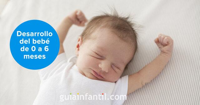 Desarrollo del bebé de 0 a 6 meses