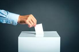 Granted the vote