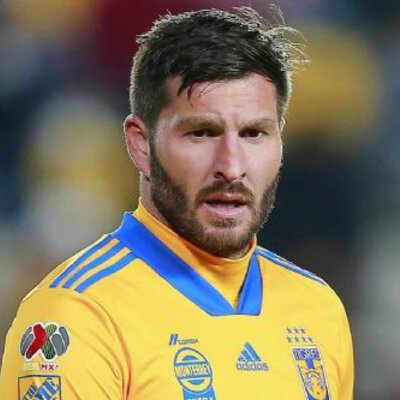 andre pierre gignac timeline