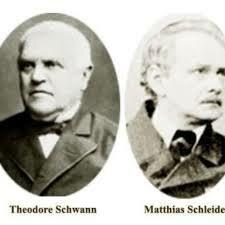 Matthias Jakob Schleiden / Theodor Schwann