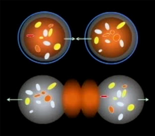 Teoría MOND (Modified Newtonian Dynamics) - (Mordechai Milgrom)