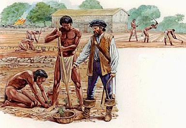 Periodo Colonial - 1601