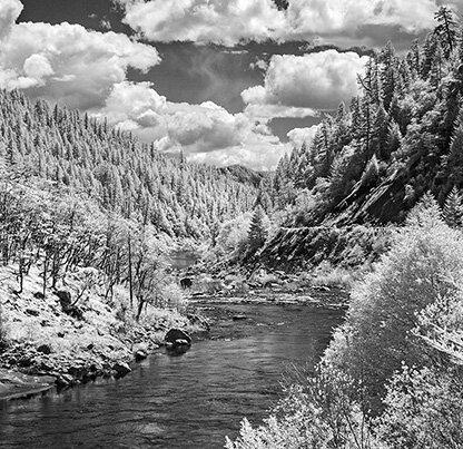 Rogue River Wars