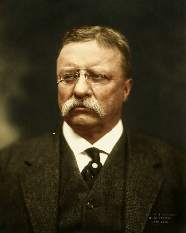 Presidencia de Theodore Roosevelt 1897-1909  1917-1921