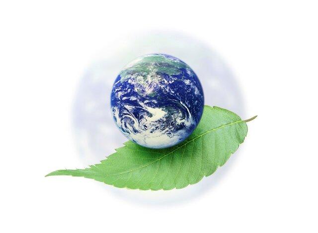 Tbilisi. Conferencia Intergubernamental sobre educación ambiental.