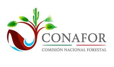 Comisión Nacional Forestal (CONAFOR)