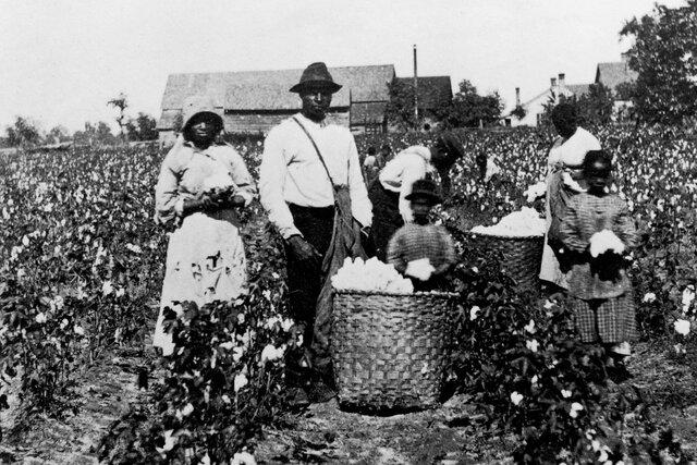 Plantation Duty Act