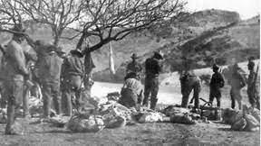 Battle of Bear Valley