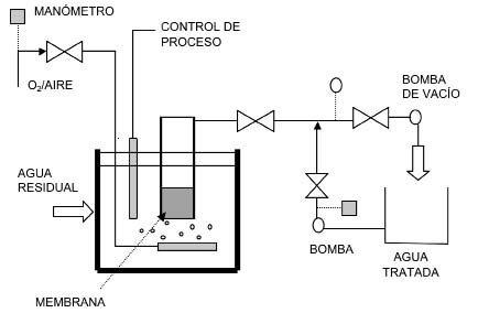 Desarrollo de primeros biorreactores de membrana