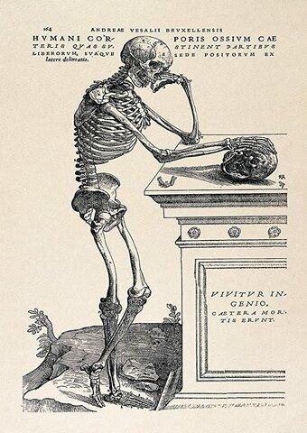 Anatomía Humana de Vesalio
