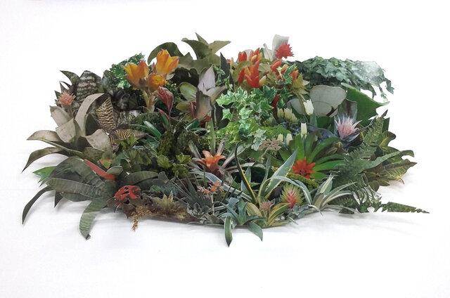 Sistemática Botánica