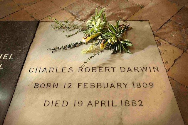 Death of Darwin (1882)