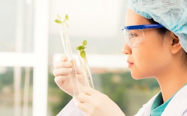 Ciencias Biomédicas en America