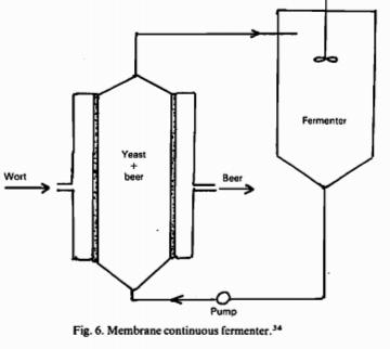 Fermentadores continuos de membrana