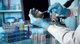 Línea del tiempo de la microbiología aplicada timeline