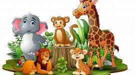 Curiosidades fofas sobre os animais timeline