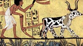 HIstòria Antiga  timeline