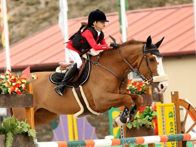 competició d'equitació