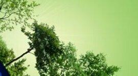 Cambios de los ciclos medioambientales del Ecosistema timeline