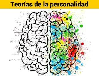 AÑOS 30: Se inicia a consolidar la psicología de la personalidad como un campo propio de la investigación.