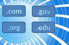 Government Goes Live Online