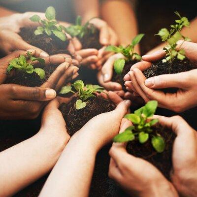 La Educación Ambiental en Colombia timeline