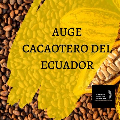 el auge cacaotero   timeline