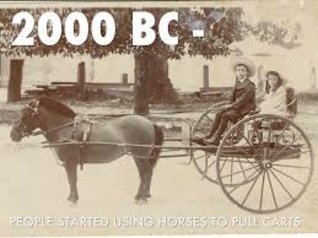 Horses in 2,000 B.C.