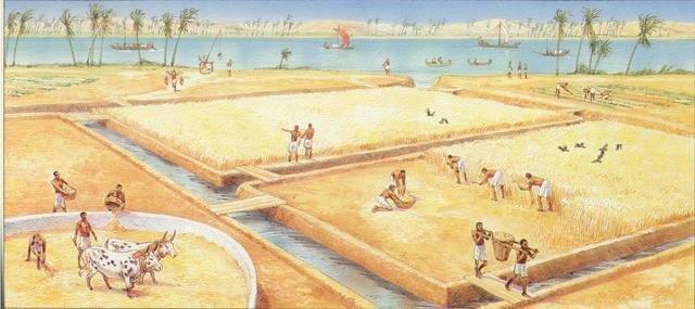Egypte als stedelijke gemeenschap